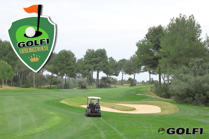 Club de Golf Alcanda – GOLF1 Lieblingswiese