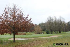 Der Herbst bedeckt die Fairways mit massenweise Laub © jfx