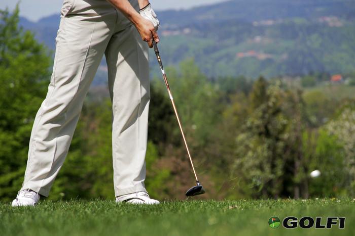 Holz 2 Golfschläger