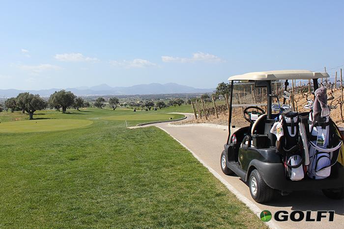 Ein Golfcar kostet circa 40,- Euro © jfx / GOLF1
