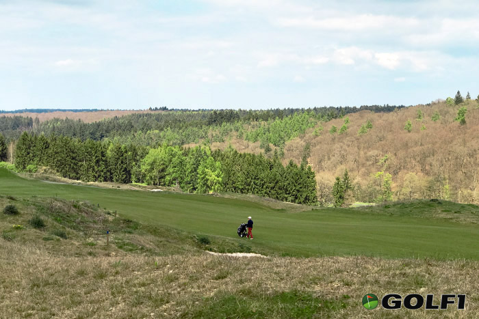 Golfplatz Hofgut Georgenthal mit Wald
