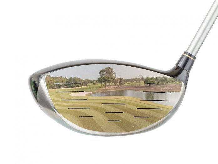 Zpckerfibel für Golfer